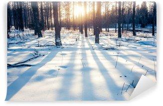Carta da Parati in Vinile Foresta di inverno in Cina