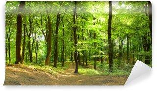 Carta da Parati in Vinile Foresta in estate