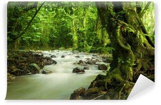 Carta da Parati in Vinile Foresta pluviale tropicale e il fiume