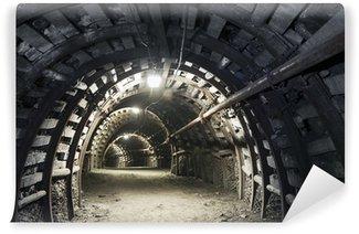 Carta da Parati in Vinile Galleria sotterranea nella miniera di carbone
