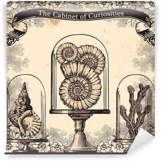 Carta da Parati in Vinile Il gabinetto di curiosità