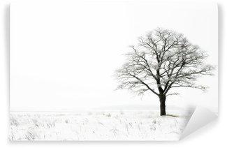Carta da Parati in Vinile Inverno solitudine