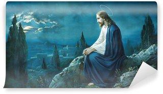 Carta da Parati in Vinile La preghiera di Gesù nel giardino del Getsemani.