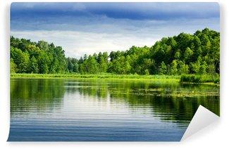 Carta da Parati in Vinile Lago e la foresta