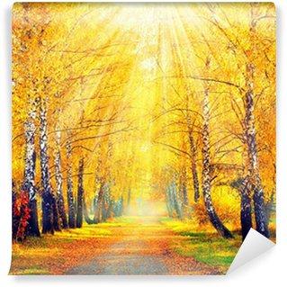 Carta da Parati Lavabile Autunnale Park. Alberi autunnali e foglie in raggi del sole