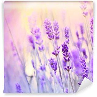 Carta da Parati Lavabile Lavender illuminato da raggi solari