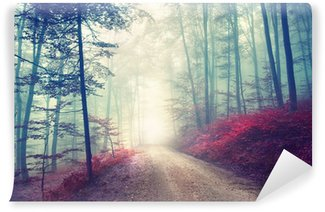Carta da Parati Lavabile Vintage magia strada forestale