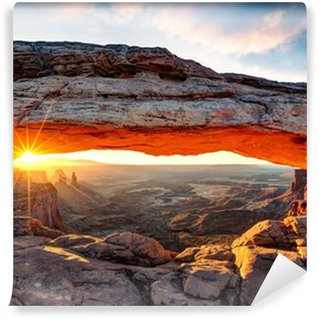 Carta da Parati in Vinile Mesa Arch