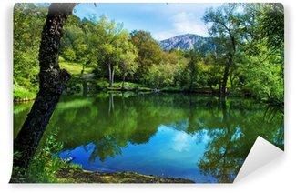 Carta da Parati in Vinile Montagna