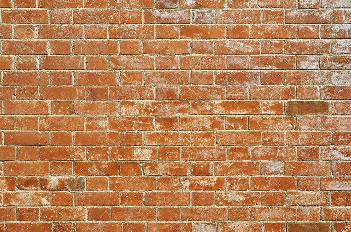 Carta da parati in vinile muro di mattoni pixers for Carta da parati effetto muro mattoni