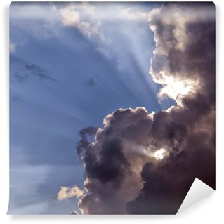 Carta da Parati in Vinile Nuvole di tempesta