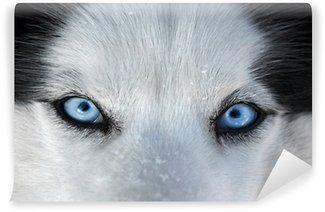 Carta da Parati in Vinile Quegli occhi azzurri di fronte ...