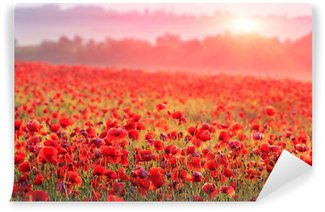 Carta da Parati in Vinile Rosso campo di papaveri nella nebbia mattutina