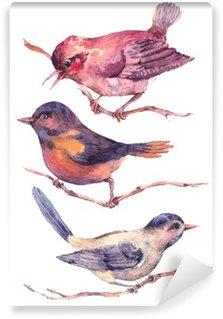 Carta da Parati in Vinile Set di acquerelli colorati uccelli isolato su bianco