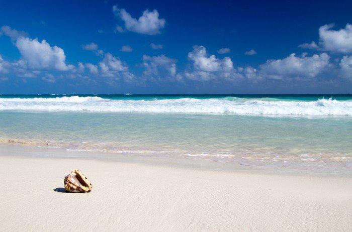 Carta da Parati in Vinile Spiaggia caraibica - Acqua