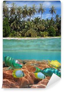 Carta da Parati in Vinile Spiaggia tropicale e barriera corallina