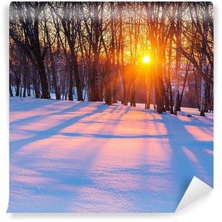 Carta da Parati in Vinile Tramonto in Winter Forest