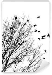 Carta da Parati in Vinile Uccelli che volano