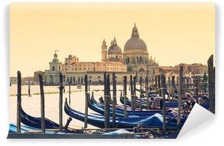 Carta da Parati in Vinile Venezia Gondole