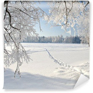 Carta da Parati in Vinile Winter park nella neve