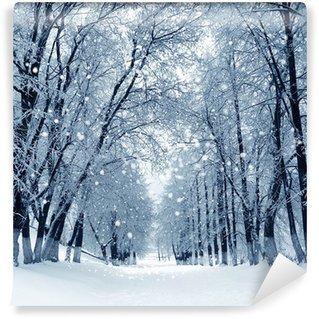 Carta da Parati in Vinile Winter Park, paesaggio