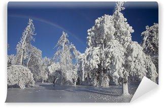 Carta da Parati in Vinile Winter Wonderland - Cascate del Niagara
