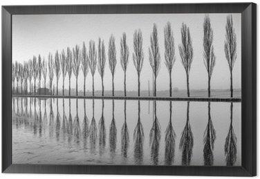 Çerçeveli Tuval Alberi riflessi sul lago all'alba in bianco e nero