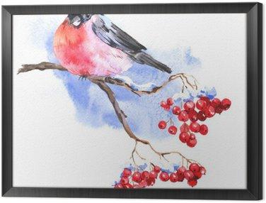 Çerçeveli Tuval Bullfinches Kış Watercolor background