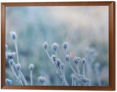 Çerçeveli Tuval Kırağı ya da kırağı ile kaplı donmuş bitkiden soyut doğal arka plan