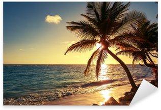 Çıkartması Tropikal sahilde palmiye ağacı