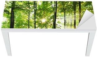 Cobertura para Mesa e Escrivaninha Forest
