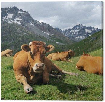 Cuadros en lienzo toros pixers vivimos para cambiar - Cuadros de vacas ...