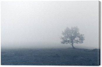 Cuadro en Lienzo Árbol solitario con niebla