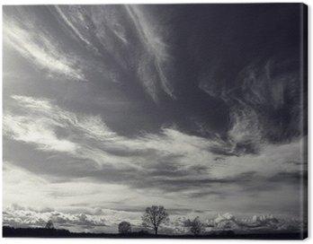 Cuadro en Lienzo Blanco y negro foto del paisaje de otoño