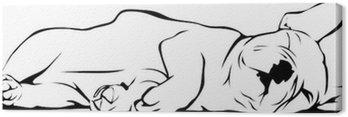 Cuadro en Lienzo Bulldog francés dormir del bebé