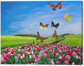 Cuadro en Lienzo Campo de flores de colores y un grupo de mariposas