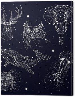Cuadro en Lienzo Conjunto de la constelación, elefante, búho, ciervos, ballenas, medusas, zorro, estrella, gráficos vectoriales