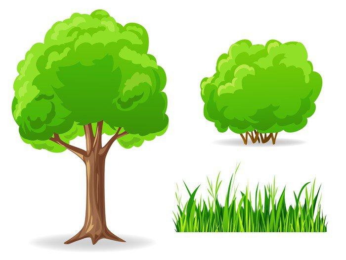 Cuadro en lienzo conjunto de plantas verdes de dibujos - Arboles y arbustos ...