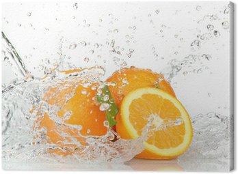 Cuadro en Lienzo Frutas anaranjadas con salpicaduras de agua