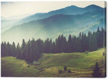 Cuadro en Lienzo Hermoso paisaje de montaña de verano
