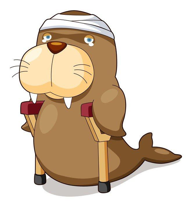 Cuadro en Lienzo Ilustracin de dibujos animados de lobo marino se