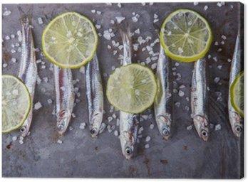 Cuadro en Lienzo La anchoa fresca Fish.Appetizer marina. atención selectiva.