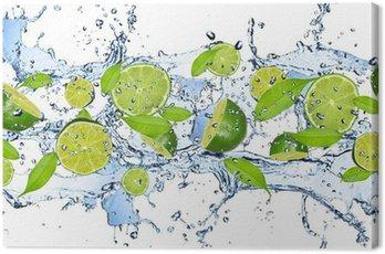 Cuadro en Lienzo Limas frescas en salpicaduras de agua, aislados en fondo blanco
