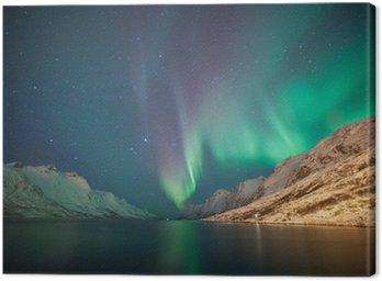 Cuadro en Lienzo Luces del Norte, Ersfjordbotn, Tromsø, Noruega