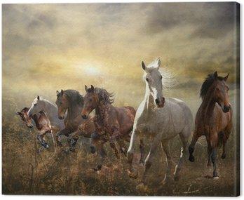 Cuadro en Lienzo Manada de caballos al galope libre al atardecer