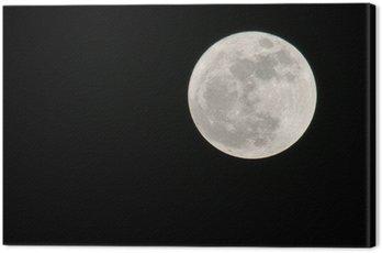 Cuadro en Lienzo Mond