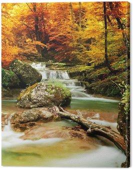 Cuadro en Lienzo Otoño arroyo bosque con árboles amarillos