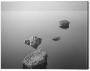 Cuadro en Lienzo Paisaje brumoso minimalista. En blanco y negro.