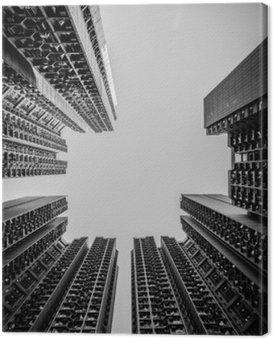 Cuadro en Lienzo Paisaje urbano de Hong Kong tono blanco y negro