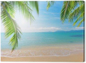 Cuadro en Lienzo Palm y playa tropical